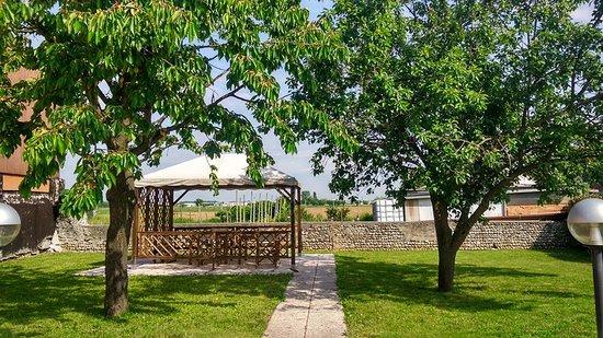 Albergo Leon Bianco : Giardino privato
