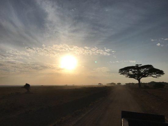 Kibo Safari Camp: photo4.jpg
