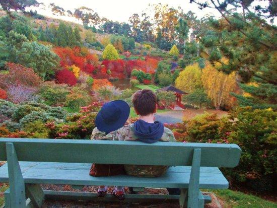Burnie, Avustralya: The garden in its stunning autumn colours.