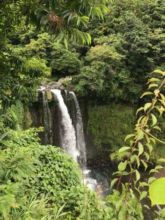 one of the falls on the way towards Shiraito Falls
