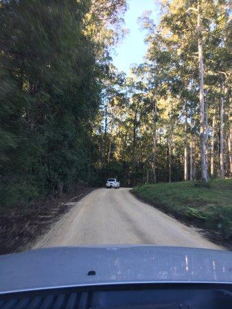 Wauchope, Australie : Lungo la via del ritorno