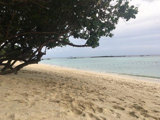 Definitely paradise on long beach
