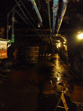 Pottsville, PA: Cave