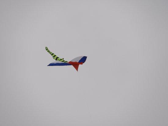Shenzhen Lianhuashan Park: Kite