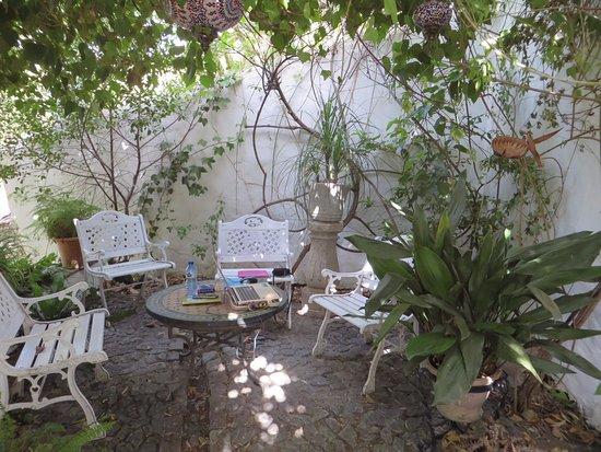 Hotel Finca el Cerrillo: my favorite shady corner