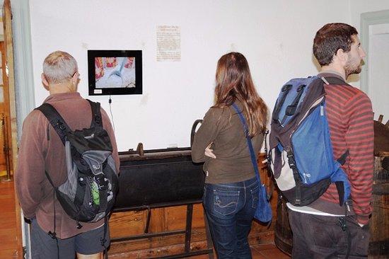 Musee de la Chataigneraie: Décorticage et tri des châtaignes au fil du temps