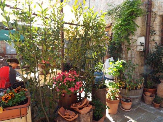 San Gusme, Italien: fiori