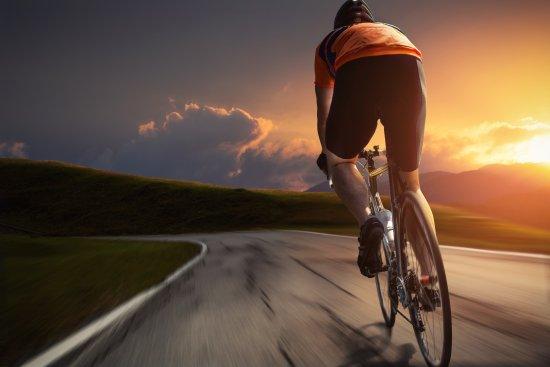 Stefans Radtouren und Fahrradverleih