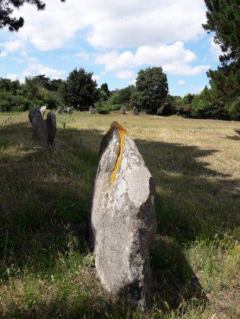 Ile-aux-Moines, France: Cromelech de Kergonan