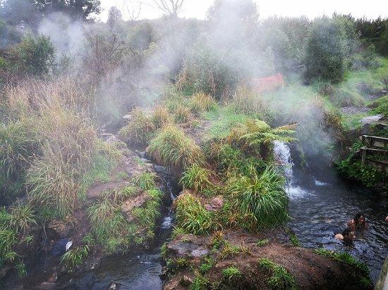 Taupo, Yeni Zelanda: Pools closer to the Waikato River