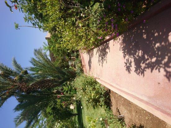 Hotel Dar Zitoune: DSC_1723_large.jpg