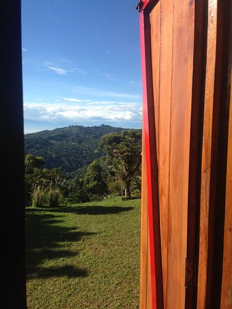 Pichinde, Colombia: View in the morning from the house window in Kantu reserve.