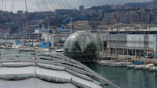 "Eataly Genova: Панорамный вид на порт и ""Сферу"""
