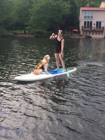 Surf Reston can even help you get your PUP to SUP!