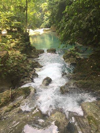 Kawasan Falls: Along the path