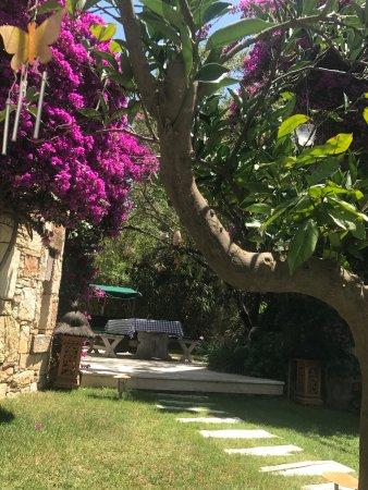 Sandima 37 Hotel Bodrum Image