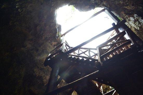 Юкатан, Мексика: Entrada al Cenote
