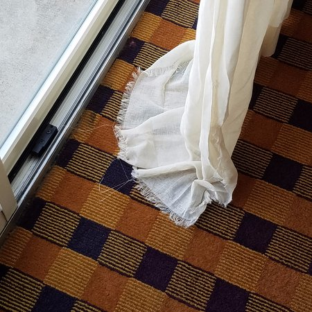 Embassy Suites by Hilton Minneapolis - Airport: Window curtains