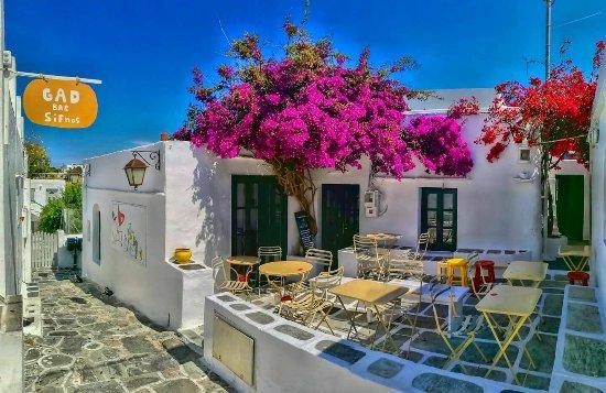 Apollonia, Greece: Μπότζι
