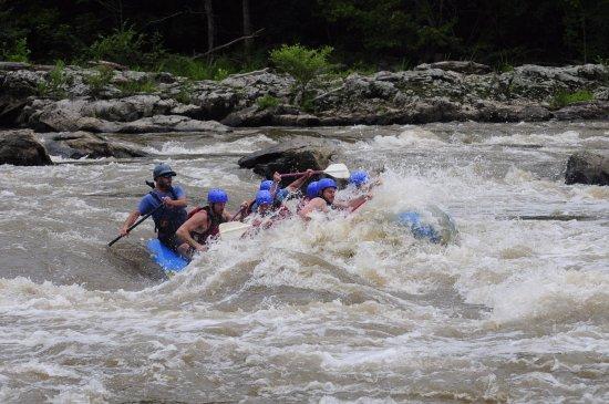 มาร์แชลล์, นอร์ทแคโรไลนา: Richard was a great guide. Everyone stayed in the boat except to get out and float the river!