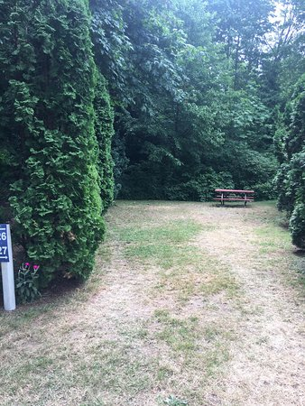 Sechelt, Canadá: The Creekside Campground and RV Park