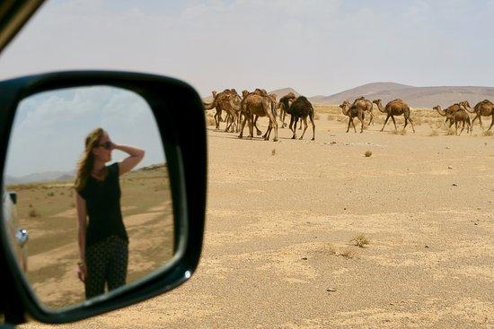 Moroccan Active Adventures: Exploring with Morocco Active Adventures