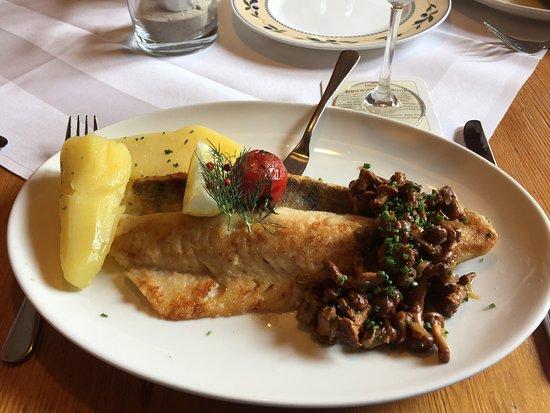 Gaienhofen, Germany: Fisch an frischen Pfifferlingen und Salzkartoffeln im Restaurant Hirschen in Horn
