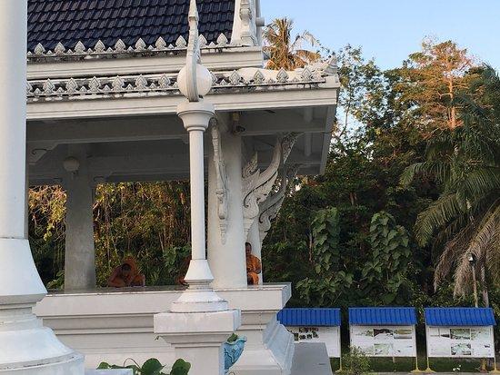 Pak Nam, Tailandia: photo4.jpg