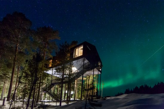 Treehotel Updated 2019 Prices Hotel Reviews Harads Sweden