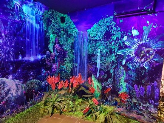Dark Mansion - 3D Glow In The Dark Museum