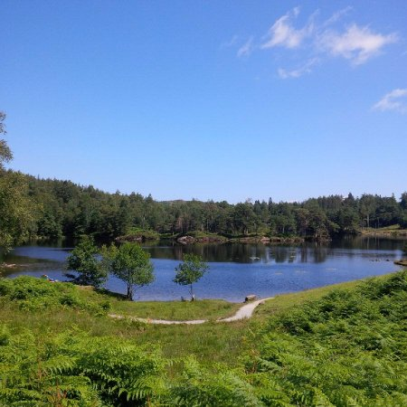 Coniston, UK: Tarn Hows View
