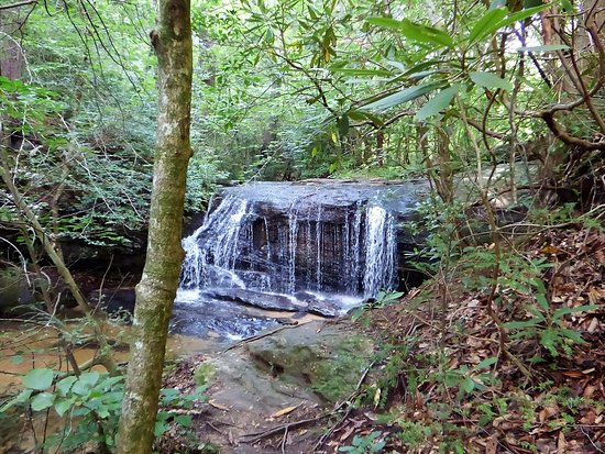 Travelers Rest, SC: This was the first waterfall, almost visible from the road.