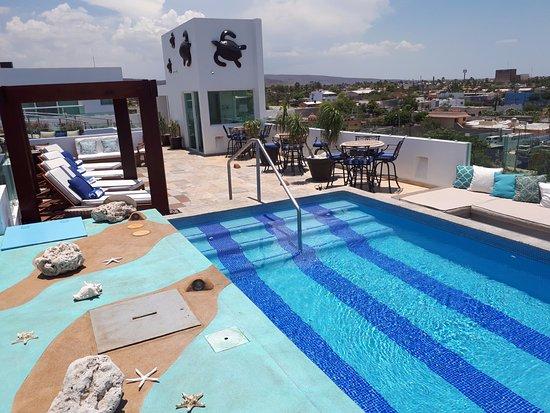 Terraza Alberca Picture Of Hotel Hblue La Paz Tripadvisor