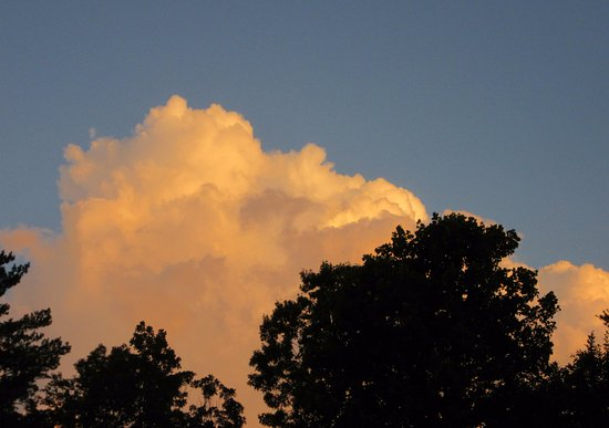 Fletcher, Carolina del Nord: Another beautiful sunset sky