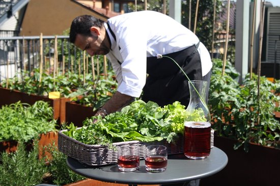 Vegetable roofgarden picture of hotel milano scala for Roof garden milano