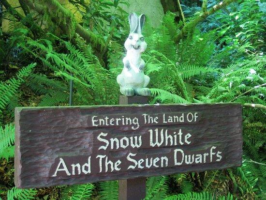 Salem, OR: Evil looking bunny.