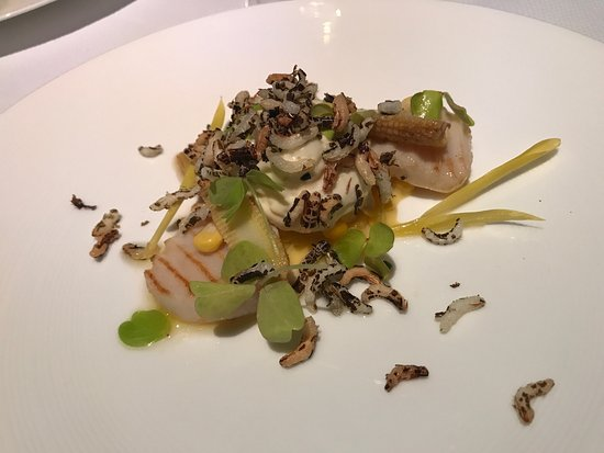 The Modern: Dishes from the 8 courses menu