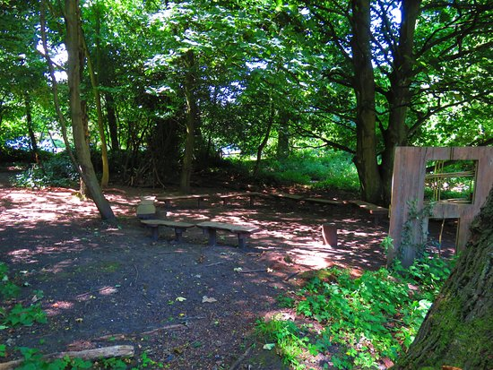 Kinross, UK: woody glade with seating
