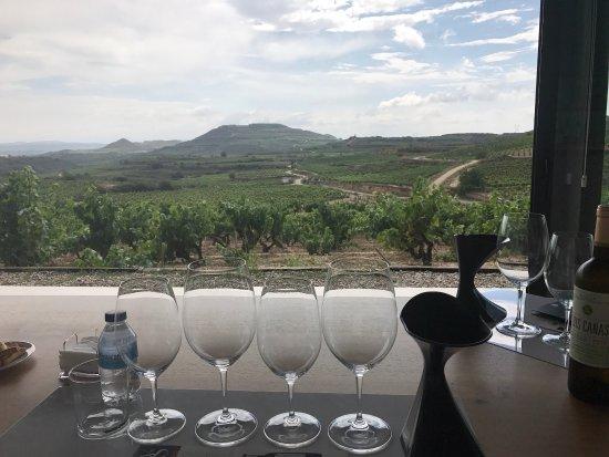 Villabuena de Alava, إسبانيا: photo7.jpg