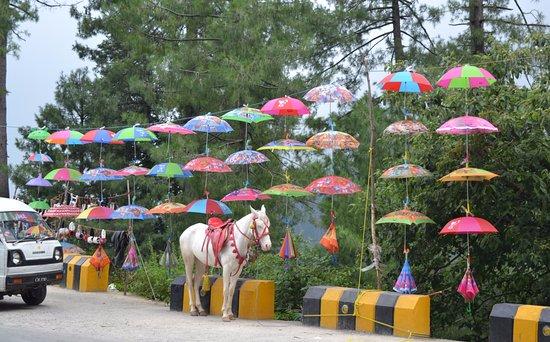 Kashmir Point: Umbrellas being sold on roadside