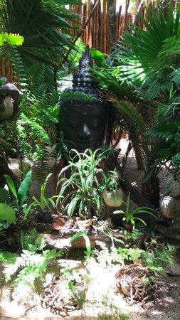 Buddha Zen Garden Picture Of Jashita Tulum Boutique Hotel Soliman Bay Tripadvisor