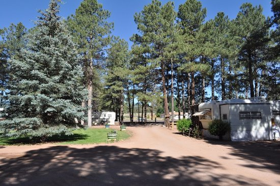 A typical summer day at the Lazy L Resort in Overgaard Arizona.