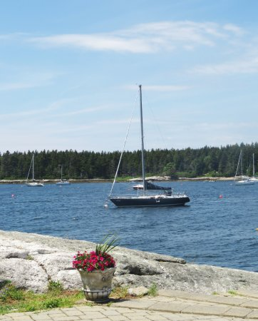 Sebasco Estates, ME: Potted and Sail