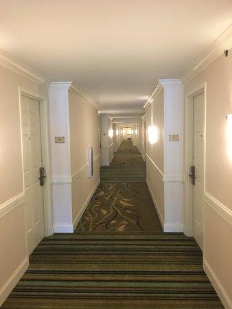 Hilton Naples: photo3.jpg