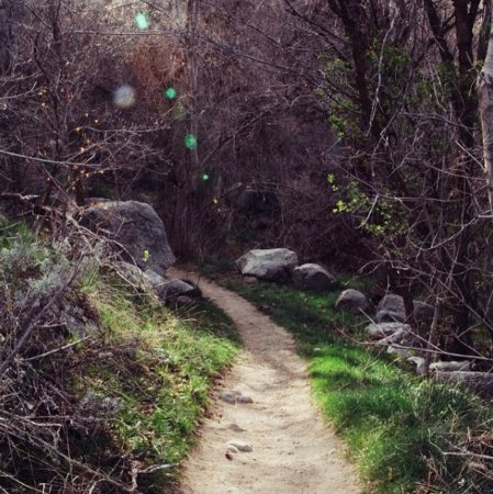 Sandy, UT: Small trail near the reservoir