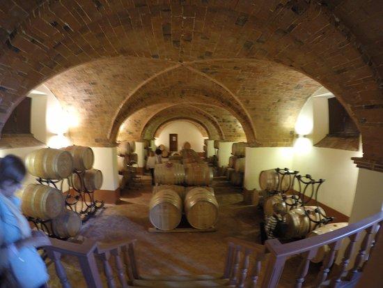 Ponteginori, Italy: Querceto