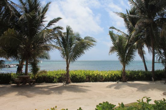 Landscape - Picture of Tradewinds Paradise Villas, Ambergris Caye - Tripadvisor