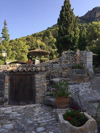 Finca Es Castell: photo1.jpg