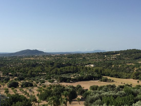 Finca Es Castell: photo4.jpg