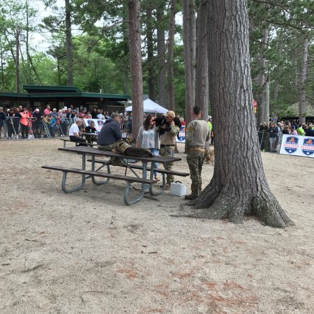 Bristol, Nueva Hampshire: The picnic tables, this day being occupied by the navy seals dogs, the entrance with my two gran